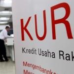 Tahun Depan, Bunga KUR Turun Jadi 7% dan Dana Pinjaman Hingga Rp50 Juta