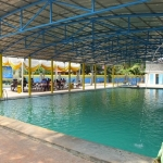Miliki Franchise Sekolah Renang Mulai Dari Modal Rp600 juta