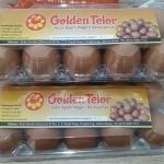 Golden Telor! Sebuah Rekomendasi Peluang Bisnis Telur Ayam