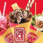 Raup Keuntungan Dari Bisnis Waffle Egio Waffle